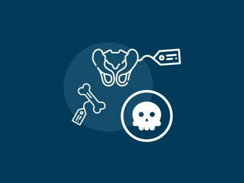 Los huesos y la antropología